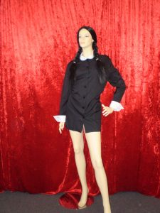 Wednesday Addams costume dress and plaited wig