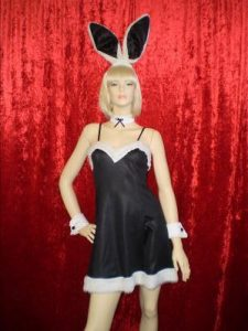 Dress style Playboy bunny costume