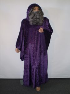 Purple velvet hooded wizard
