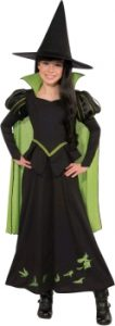 Wicked witch of the west childs costume