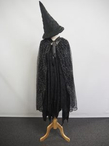 Witch costume with spider web cape