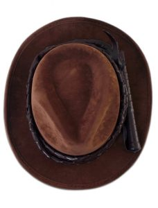 Indiana Jones hat & whip