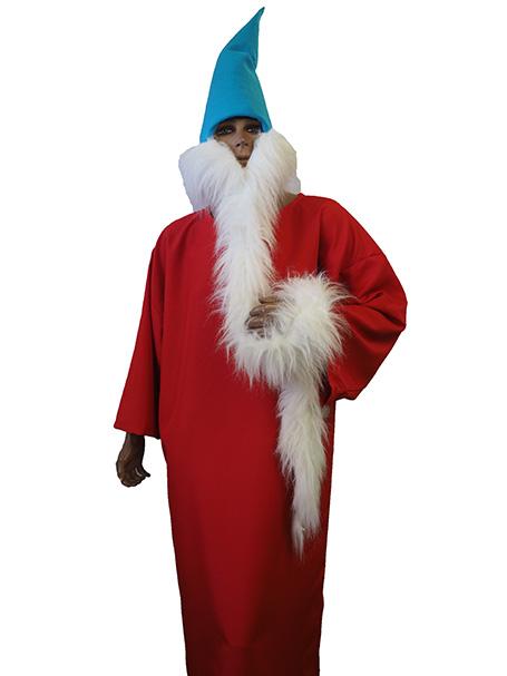 Wizard Whitebeard costume hire